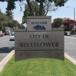 Bellflower_pic3_450x450